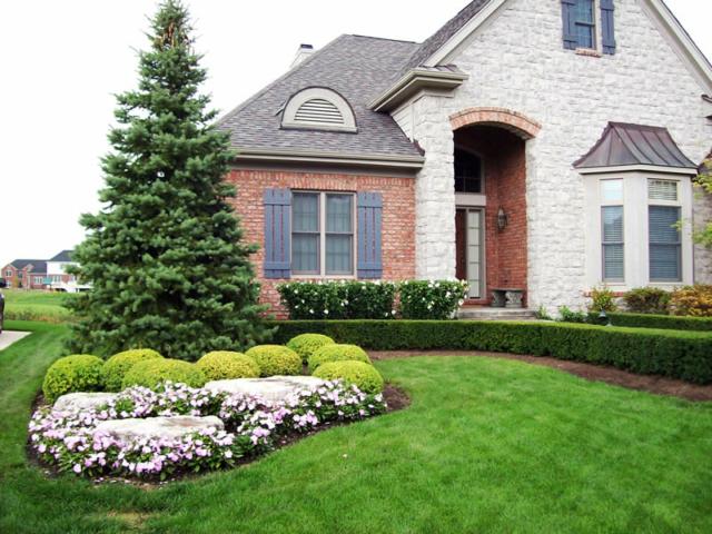 Landscape Design Northville Michigan